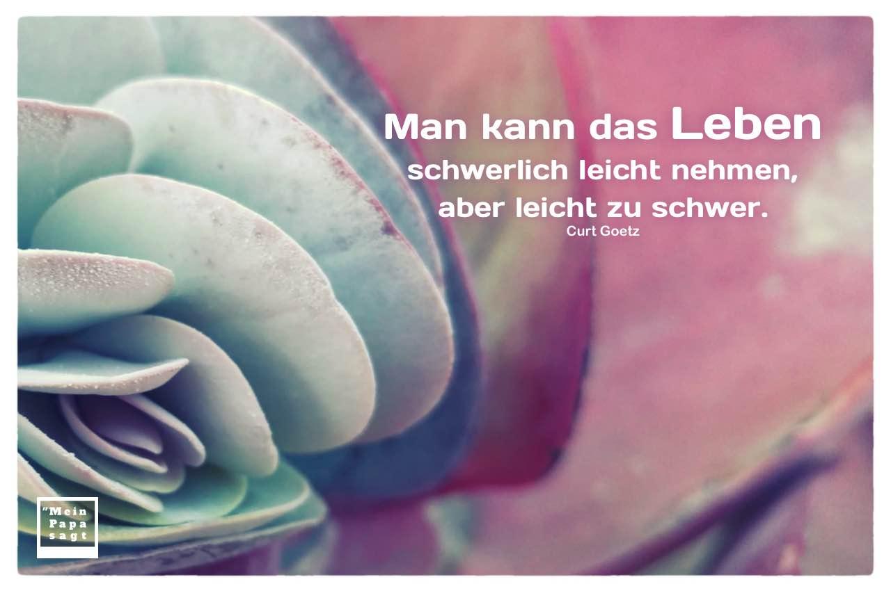 Pflanze mit Goetz Zitate Bilder: Man kann das Leben schwerlich leicht nehmen, aber leicht zu schwer. Curt Goetz