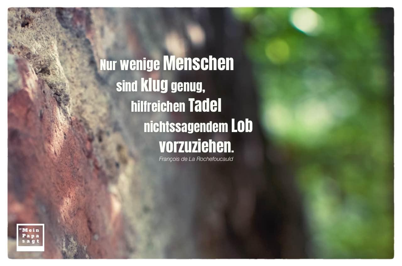 Steinmauer vor Natur mit Rochefoucauld Zitate Bilder: Nur wenige Menschen sind klug genug, hilfreichen Tadel nichtssagendem Lob vorzuziehen. François de La Rochefoucauld