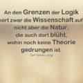 An den Grenzen der Logik hört zwar die Wissenschaft auf, nicht aber die Natur, die auch dort blüht, wohin noch keine Theorie gedrungen ist - Carl Gustav Jung