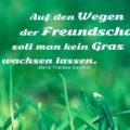 Auf den Wegen der Freundschaft soll man kein Gras wachsen lassen - Marie Thérèse Geoffrin
