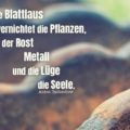 Beitragsbild - Die Blattlaus vernichtet die Pflanzen, der Rost Metall und die Lüge die Seele