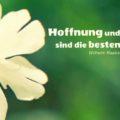 Hoffnung und Freude sind die besten Ärzte - Wilhelm Raabe