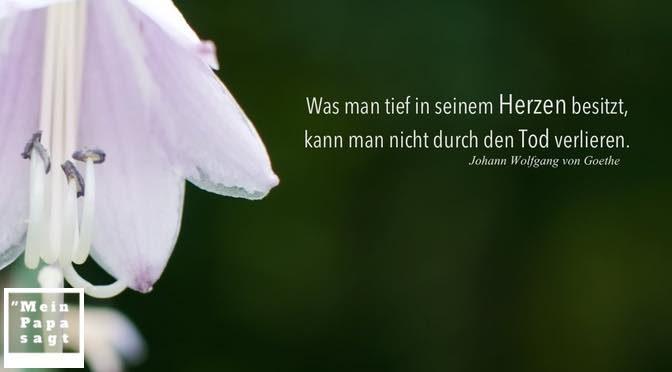 Johann wolfgang von goethe gedichte trauer