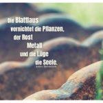 Altes landwirtschaftliches Gerät mit Tschechow Zitate mit Bild: Die Blattlaus vernichtet die Pflanzen, der Rost Metall und die Lüge die Seele. Anton Tschechow