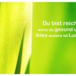 Palmenblätter im Sonnenlicht mit Sprüche mit Bild: Du bist reich wenn du gesund bist. Alles andere ist Luxus.