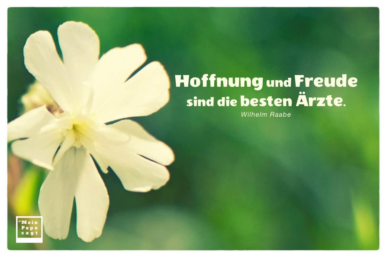 Blütenkelch mit Raabe Zitate mit Bildern: Hoffnung und Freude sind die besten Ärzte. Wilhelm Raabe