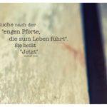 """Holz aufgebrochen mit Tolle Zitate mit Bild: Suche nach der """"engen Pforte, die zum Leben führt"""". Sie heißt """"Jetzt"""". Eckhart Tolle"""