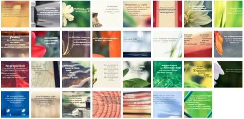 Übersichtsbild. Bilder Galerie mit Lebensweisheiten, Weisheiten, Zitate Bilder, Sprichwörter, Affirmationen und Sprüche Bilder des Tages März 2020