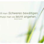 Gräser mit Brecht Zitate Bilder: Will man Schweres bewältigen, muss man es leicht angehen. Bertolt Brecht