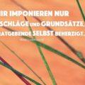 Mir imponieren nur die Ratschläge und Grundsätze, die der Ratgebende selbst beherzigt - Rosa Luxemburg