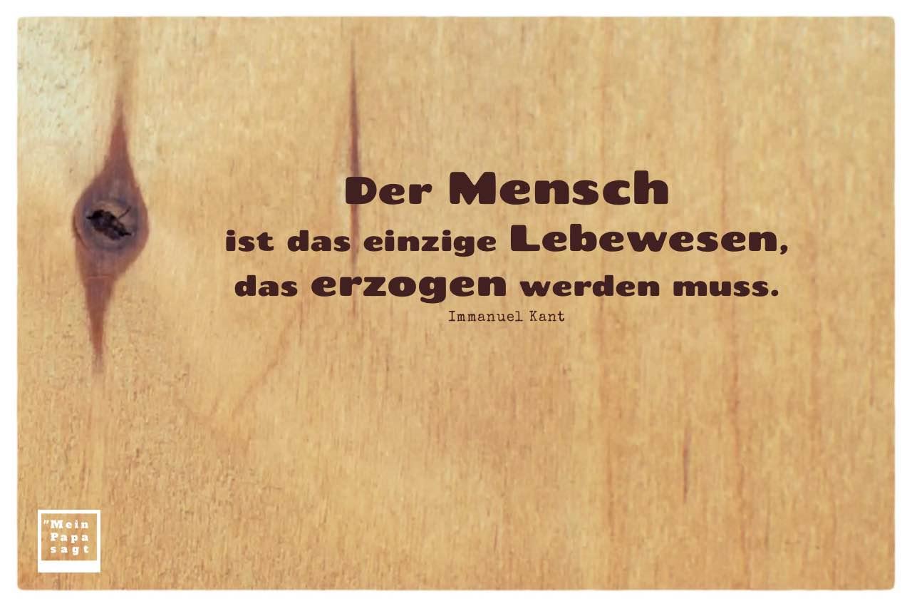 Holzbrett mit Mein Papa sagt Immanuel Kant Zitate mit Bild: Der Mensch ist das einzige Lebewesen, das erzogen werden muss. Immanuel Kant