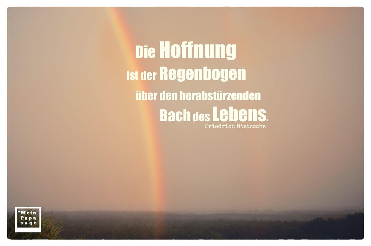 Regenbogen mit Nietzsche Zitate Bilder: Die Hoffnung ist der Regenbogen über den herabstürzenden Bach des Lebens. Friedrich Nietzsche