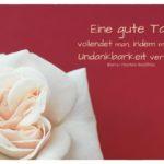 weiße Rose mit Geoffrin Zitate mit Bild: Eine gute Tat vollendet man, indem man die Undankbarkeit verzeiht. Marie-Thérèse Geoffrin