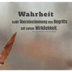 Knospe im Wald mit Hegel Zitate und Bilder: Wahrheit heißt Übereinstimmung des Begriffs mit seiner Wirklichkeit. Georg Wilhelm Friedrich Hegel