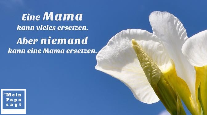 Eine Mama kann vieles ersetzen. Aber niemand kann eine Mama ersetzen