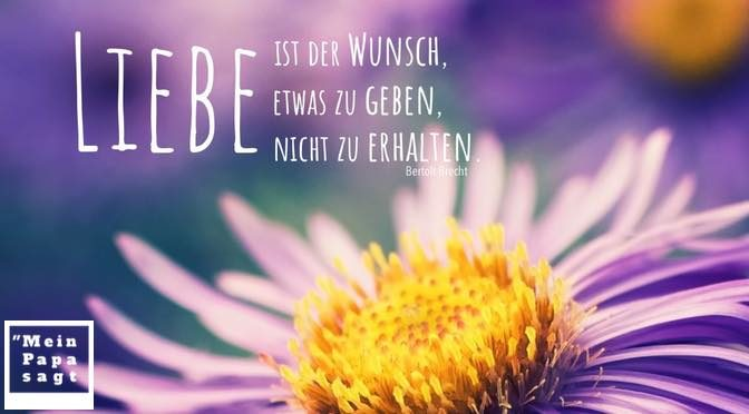 Liebe ist der Wunsch, etwas zu geben, nicht zu erhalten – Bertolt Brecht