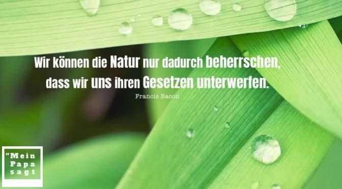 Wir können die Natur nur dadurch beherrschen, dass wir uns ihren Gesetzen unterwerfen – Francis Bacon