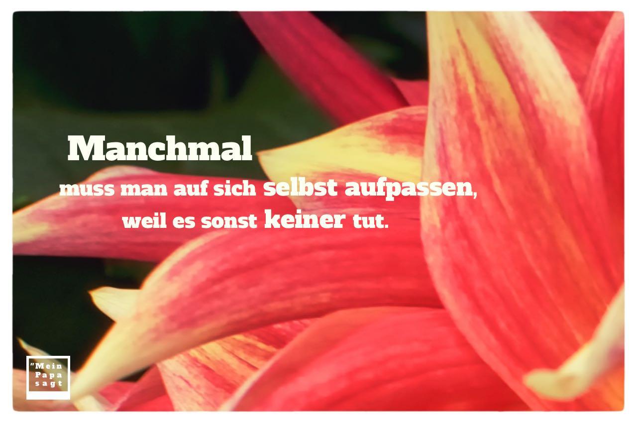 Blütenblätter mit Sprüche Bild: Manchmal muss man auf sich selbst aufpassen, weil es sonst keiner tut.