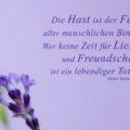 Die Hast ist der Feind aller menschlichen Bindungen. Wer keine Zeit für Liebe und Freundschaft hat, ist ein lebendiger Toter - Helen Keller