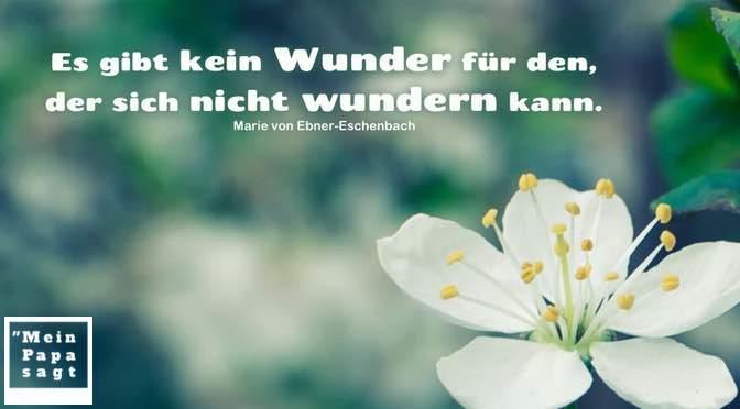 Es gibt kein Wunder für den, der sich nicht wundern kann – Marie von Ebner-Eschenbach