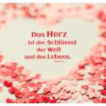 Herz aus Herzen mit Novalis Zitate mit Bild: Das Herz ist der Schlüssel der Welt und des Lebens. Novalis
