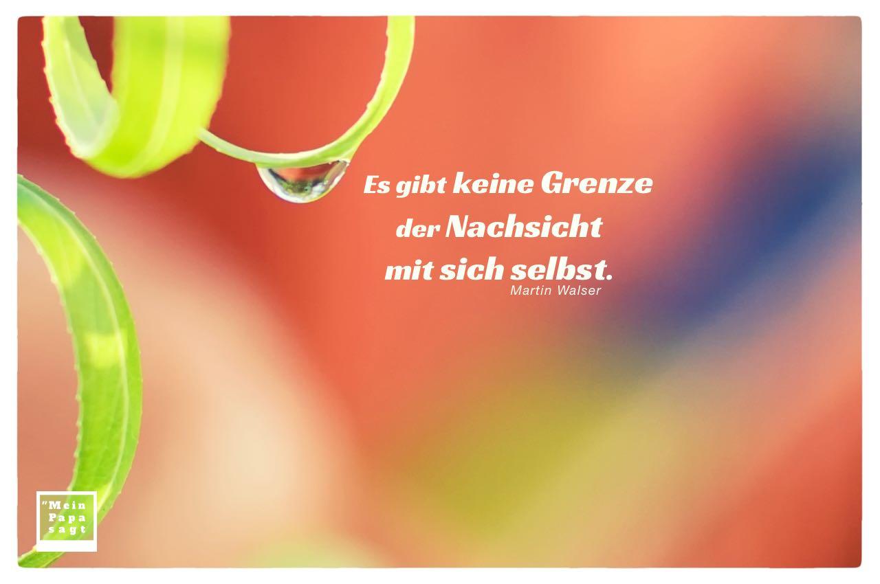 Regentropfen an Weide mit Walser Zitate mit Bild: Es gibt keine Grenze der Nachsicht mit sich selbst. Martin Walser
