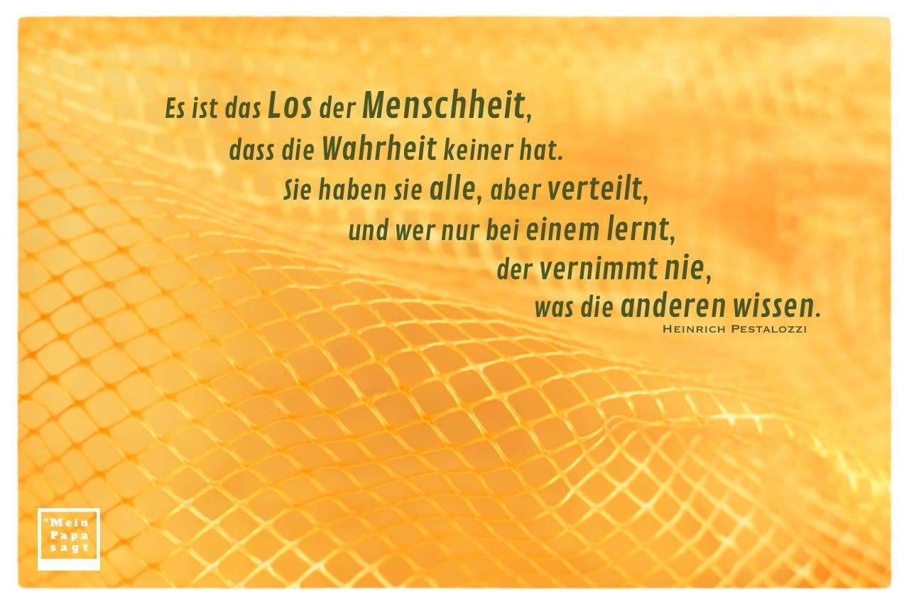 Orangen-Netz mit Pestalozzi Zitate mit Bild: Es ist das Los der Menschheit, dass die Wahrheit keiner hat. Sie haben sie alle, aber verteilt, und wer nur bei einem lernt, der vernimmt nie, was die anderen wissen. Heinrich Pestalozzi