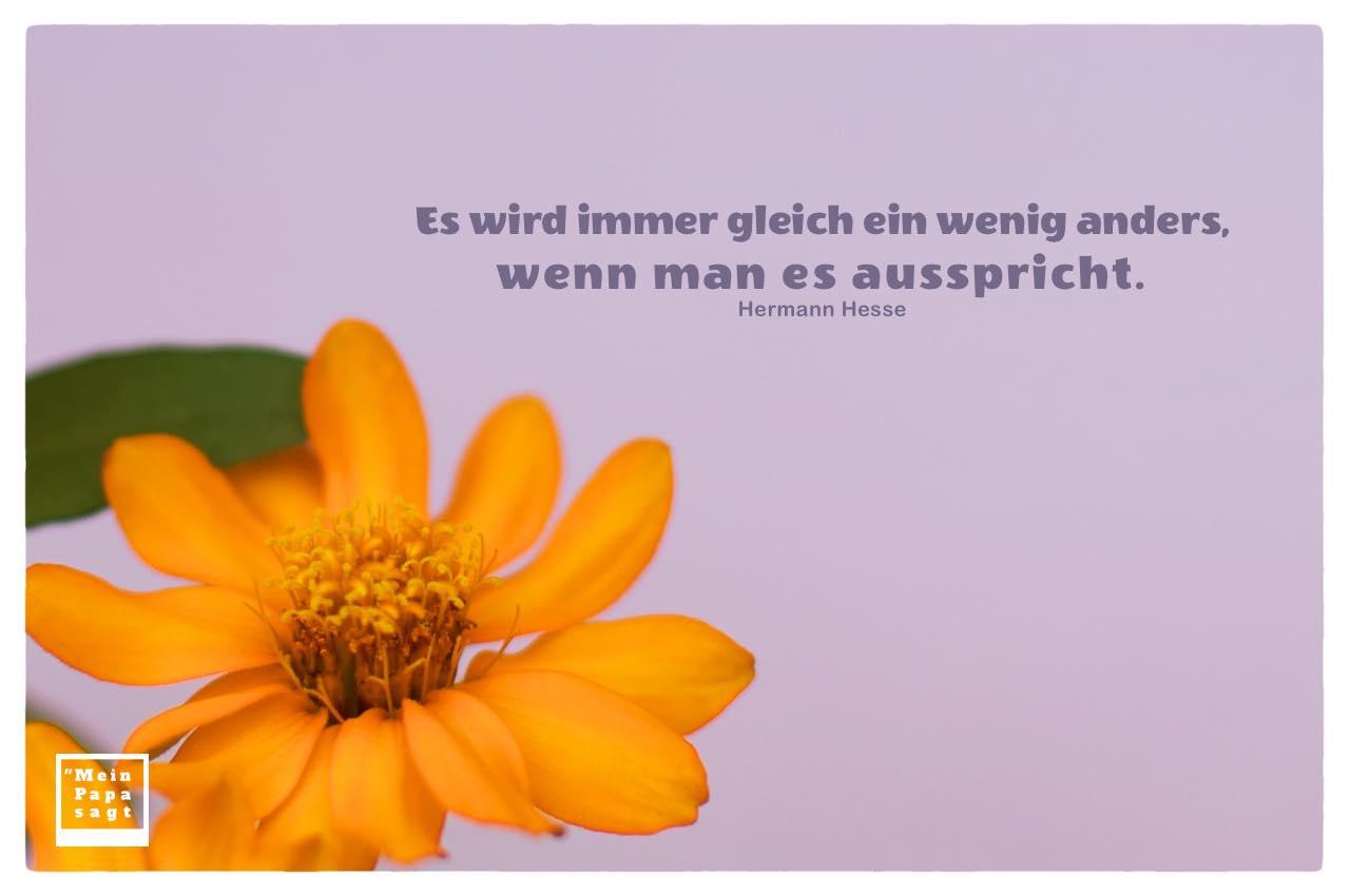 Blütenkelch mit Mein Papa sagt Hesse Zitate mit Bild: Es wird immer gleich ein wenig anders, wenn man es ausspricht. Hermann Hesse
