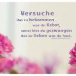 Blüten mit Shaw Zitate mit Bild: Versuche das zu bekommen was du liebst, sonst bist du gezwungen das zu lieben was du hast. George Bernard Shaw
