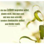 Weiden-Blätter mit Tschechow Zitate mit Bild: Wenn du das Leben begreifen willst, glaube nicht, was man sagt und was man schreibt, sondern beobachte selbst und denke nach. Anton Tschechow