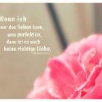 Rosa Rose mit Stahl Zitate mit Bild: Wenn ich nur das lieben kann, was perfekt ist, dann ist es auch keine richtige Liebe. Stefanie Stahl