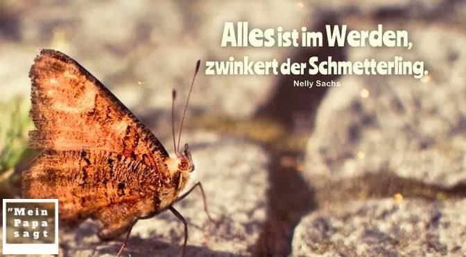 Alles ist im Werden, zwinkert der Schmetterling – Nelly Sachs