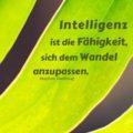 Intelligenz ist die Fähigkeit, sich dem Wandel anzupassen - Stephen Hawking
