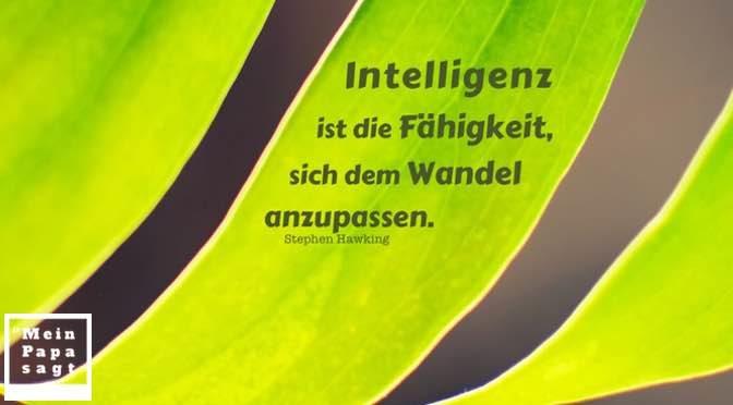 Intelligenz ist die Fähigkeit, sich dem Wandel anzupassen – Stephen Hawking