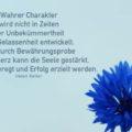 Wahrer Charakter wird nicht in Zeiten der Unbekümmertheit und Gelassenheit entwickelt. Nur durch Bewährungsprobe und Schmerz kann die Seele gestärkt, Ehrgeiz angeregt und Erfolg erzielt werden - Helen Keller