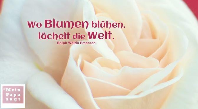 Wo Blumen blühen, lächelt die Welt – Ralph Waldo Emerson