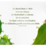Kaktee mit Heine Zitate mit Bild: Die Herrlichkeit der Welt ist immer adäquat der Herrlichkeit des Geistes, der sie betrachtet. Der Gute findet hier sein Paradies, der Schlechte genießt schon hier seine Hölle. Heinrich Heine