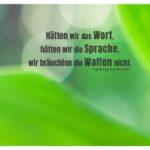 Blätter Maiglöckchen unscharf mit Bachmann Zitate mit Bild: Hätten wir das Wort, hätten wir die Sprache, wir bräuchten die Waffen nicht. Ingeborg Bachmann