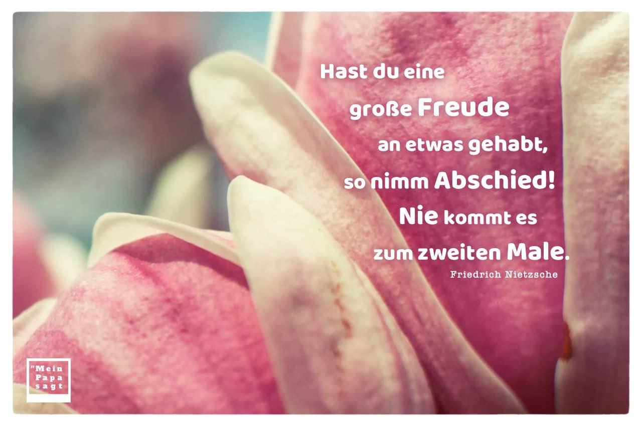 Magnolien mit Nietzsche Zitate Bilder: Hast du eine große Freude an etwas gehabt, so nimm Abschied! Nie kommt es zum zweiten Male. Friedrich Nietzsche