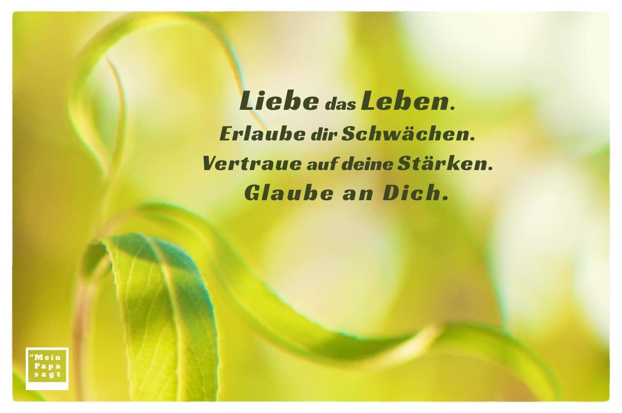 Weidenblätter mit Sprüche Bilder: Liebe das Leben. Erlaube dir Schwächen. Vertraue auf deine Stärken. Glaube an Dich.