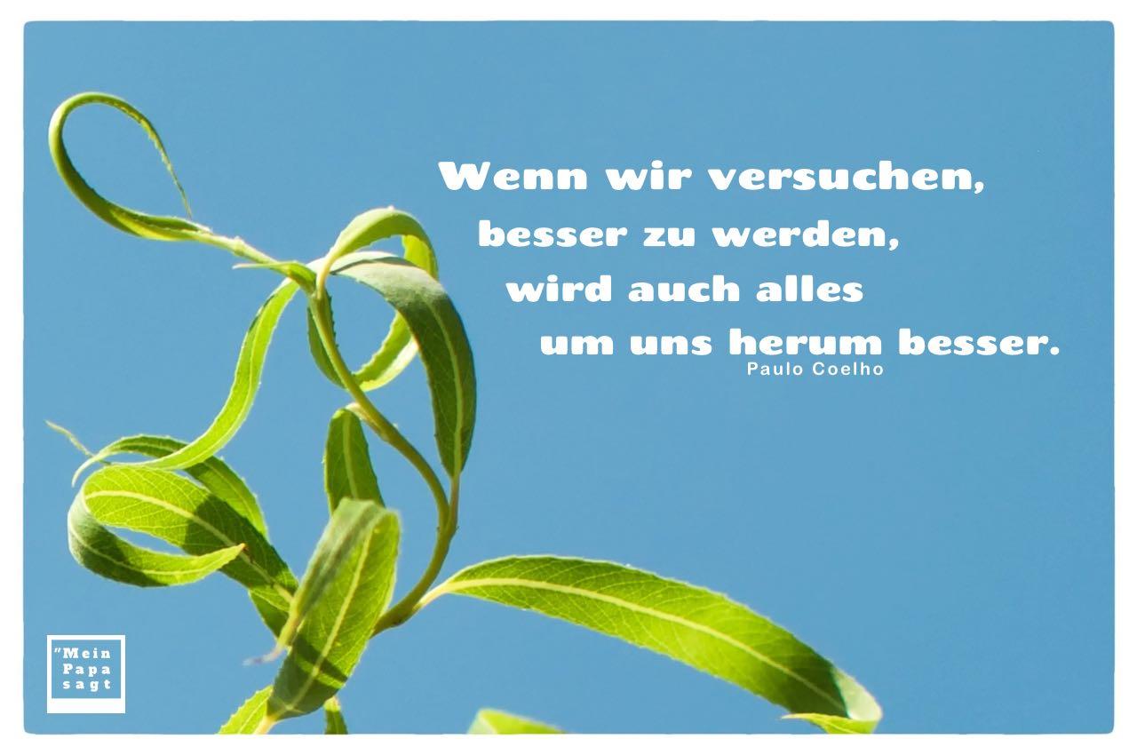Weide vor Himmel mit Coelho Zitate Bilder: Wenn wir versuchen, besser zu werden, wird auch alles um uns herum besser. Paulo Coelho