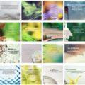September 2020 - Zitate und Bilder