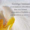 Beitragsbild - Geistige Immunität wird dadurch erworben, dass wir lernen, destruktive Gefühle zu vermeiden und positive zu entwickeln