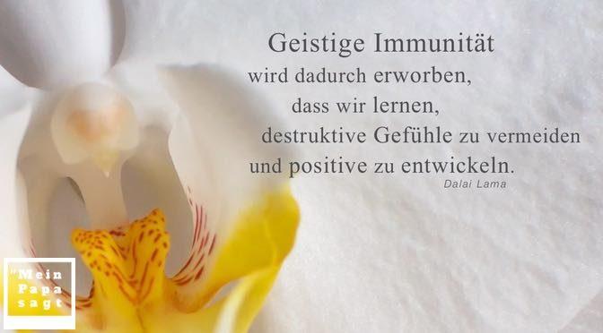 Geistige Immunität wird dadurch erworben, dass wir lernen, destruktive Gefühle zu vermeiden und positive zu entwickeln – Dalai Lama