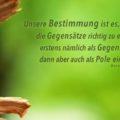 Unsere Bestimmung ist es, die Gegensätze richtig zu erkennen, erstens nämlich als Gegensätze, dann aber auch als Pole einer Einheit - Hermann Hesse