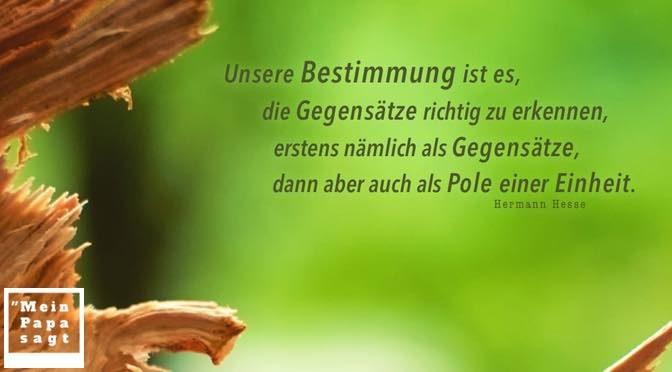 Unsere Bestimmung ist es, die Gegensätze richtig zu erkennen, erstens nämlich als Gegensätze, dann aber auch als Pole einer Einheit – Hermann Hesse
