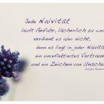 Lavendel mit Joubert Zitate Bilder: Jede Naivität läuft Gefahr, lächerlich zu werden, verdient es aber nicht, denn es liegt in jeder Naivität ein unreflektiertes Vertrauen und ein Zeichen von Unschuld. Joseph Joubert