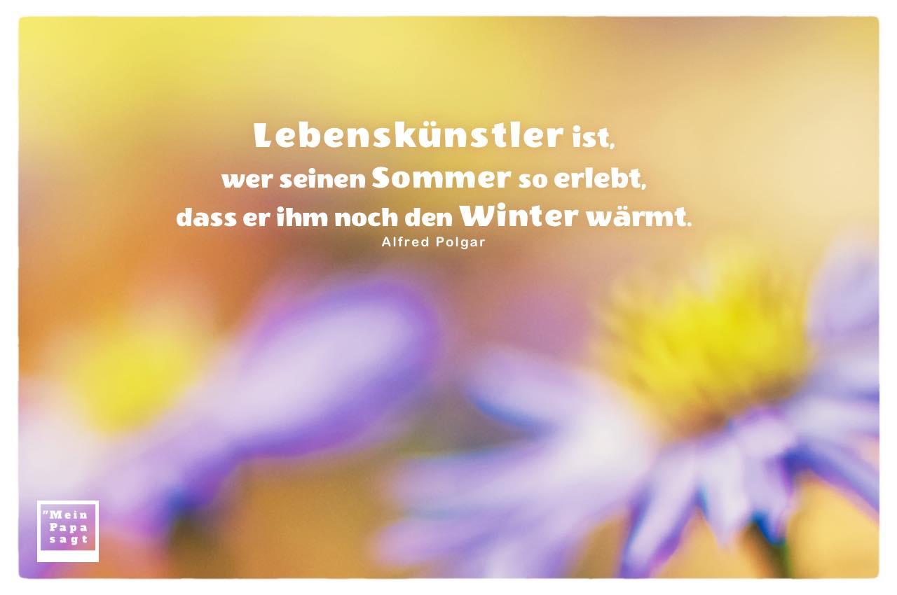 Blumen mit Mein Papa sagt Alfred Polgar Zitate Bilder: Lebenskünstler ist, wer seinen Sommer so erlebt, dass er ihm noch den Winter wärmt. Alfred Polgar