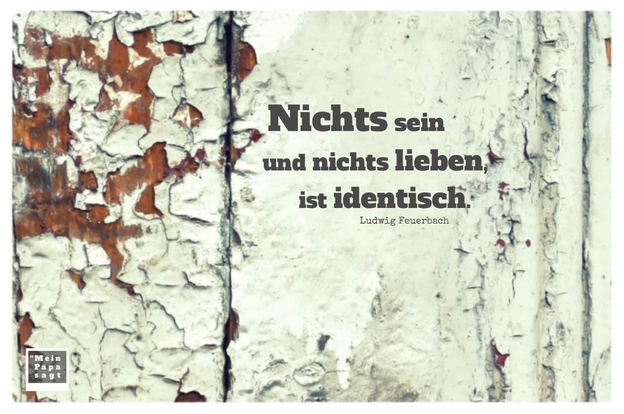 Alter Lack auf Holz mit Feuerbach Zitate mit Bild: Nichts sein und nichts lieben, ist identisch. Ludwig Feuerbach
