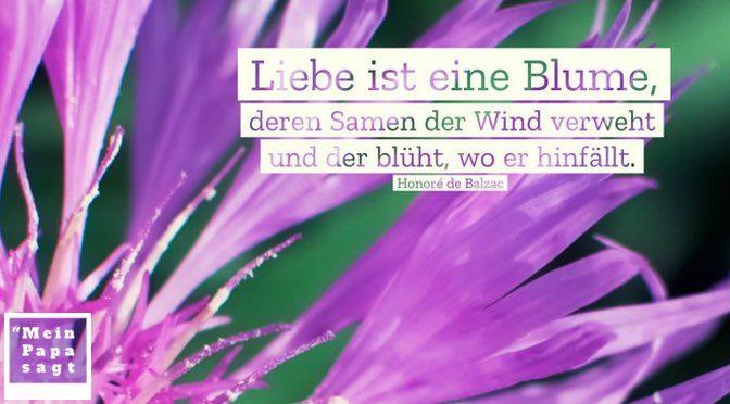 Liebe ist eine Blume, deren Samen der Wind verweht und der blüht, wo er hinfällt – Honoré de Balzac